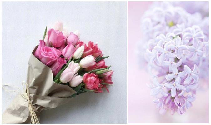 flowershop04